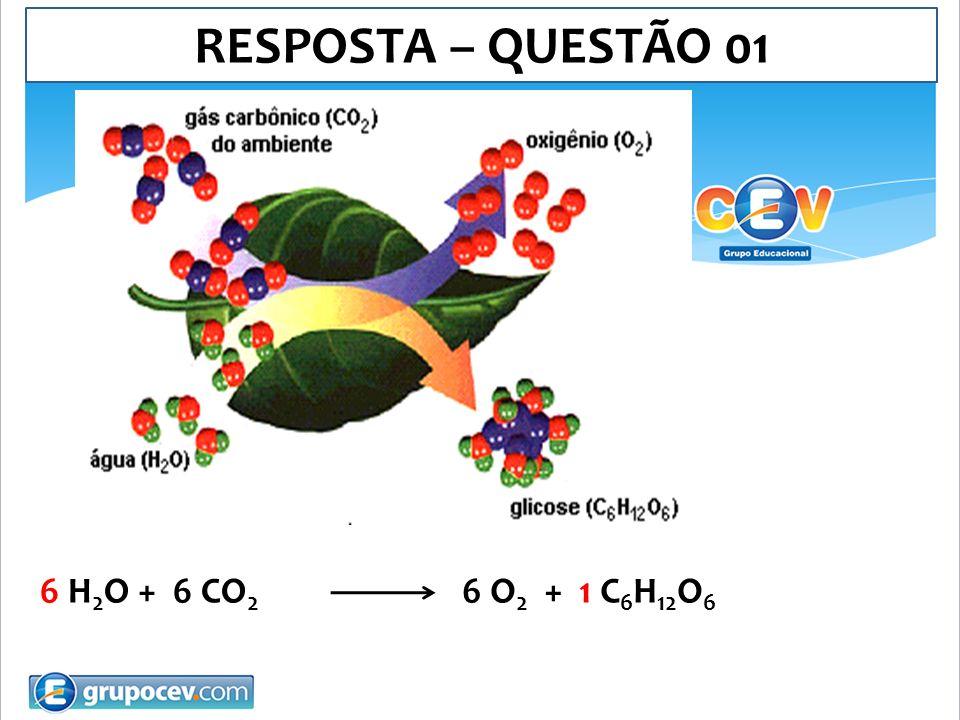 08.A obtenção de etanol a partir de sacarose por fermentação, pode ser representada pela seguinte equação: Considerando que o etanol (C 2 H 5 OH) seja puro, calcule a massa (em Kg) de sacarose necessária para produzir um volume de 50 litros de etanol, suficiente para encher o tanque de um automóvel.