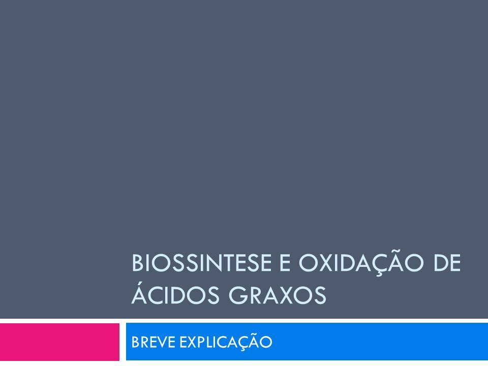 BIOSSINTESE E OXIDAÇÃO DE ÁCIDOS GRAXOS BREVE EXPLICAÇÃO