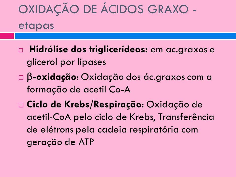 OXIDAÇÃO DE ÁCIDOS GRAXO - etapas Hidrólise dos triglicerídeos: em ac.graxos e glicerol por lipases -oxidação: Oxidação dos ác.graxos com a formação d