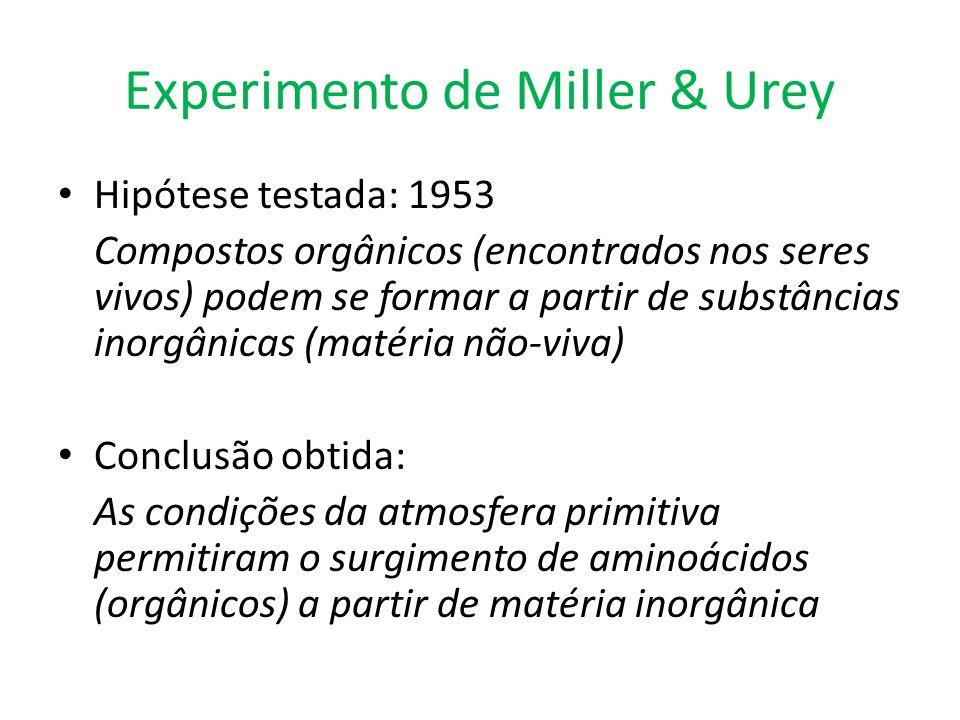 Experimento de Miller & Urey Hipótese testada: 1953 Compostos orgânicos (encontrados nos seres vivos) podem se formar a partir de substâncias inorgâni