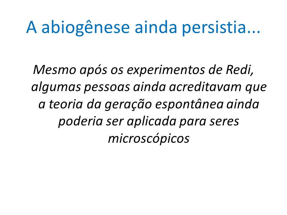 A abiogênese ainda persistia... Mesmo após os experimentos de Redi, algumas pessoas ainda acreditavam que a teoria da geração espontânea ainda poderia
