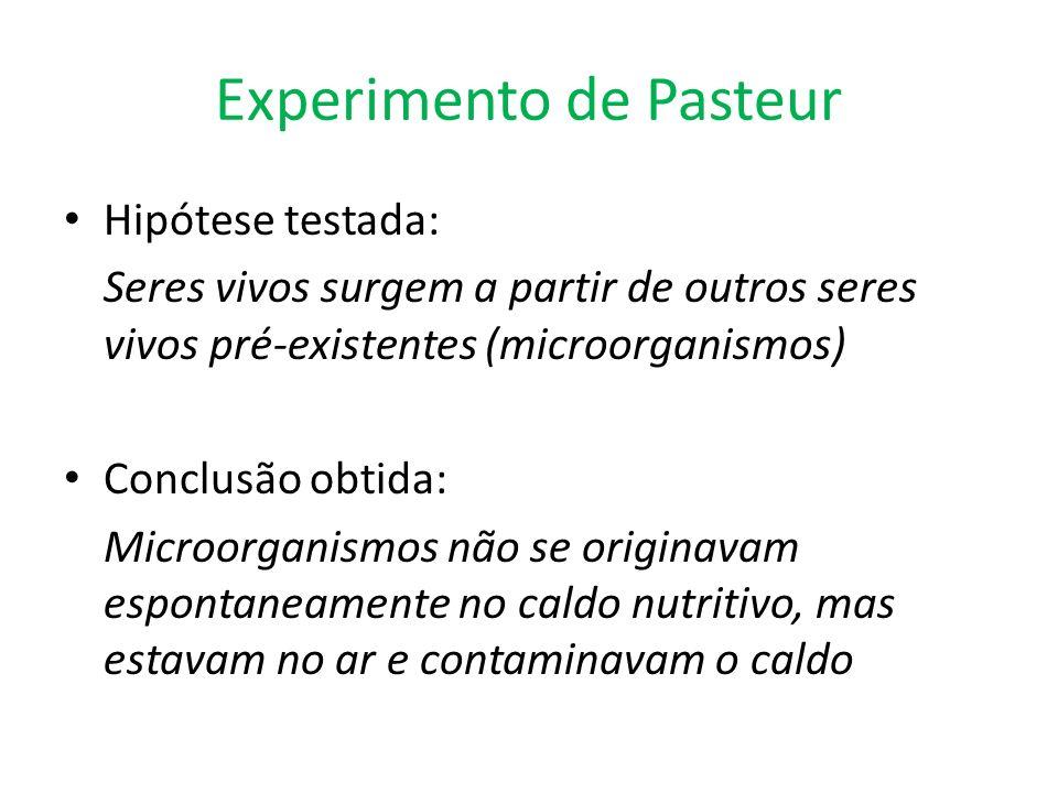 Hipótese testada: Seres vivos surgem a partir de outros seres vivos pré-existentes (microorganismos) Conclusão obtida: Microorganismos não se originav