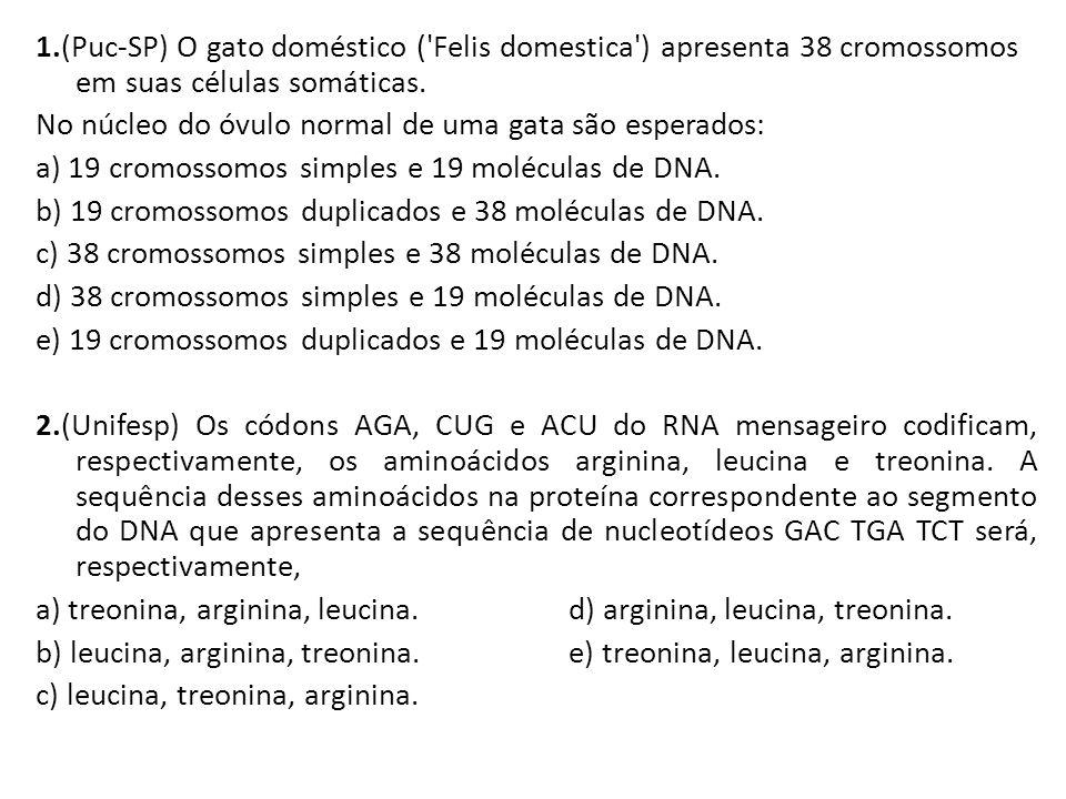 1.(Puc-SP) O gato doméstico ( Felis domestica ) apresenta 38 cromossomos em suas células somáticas.
