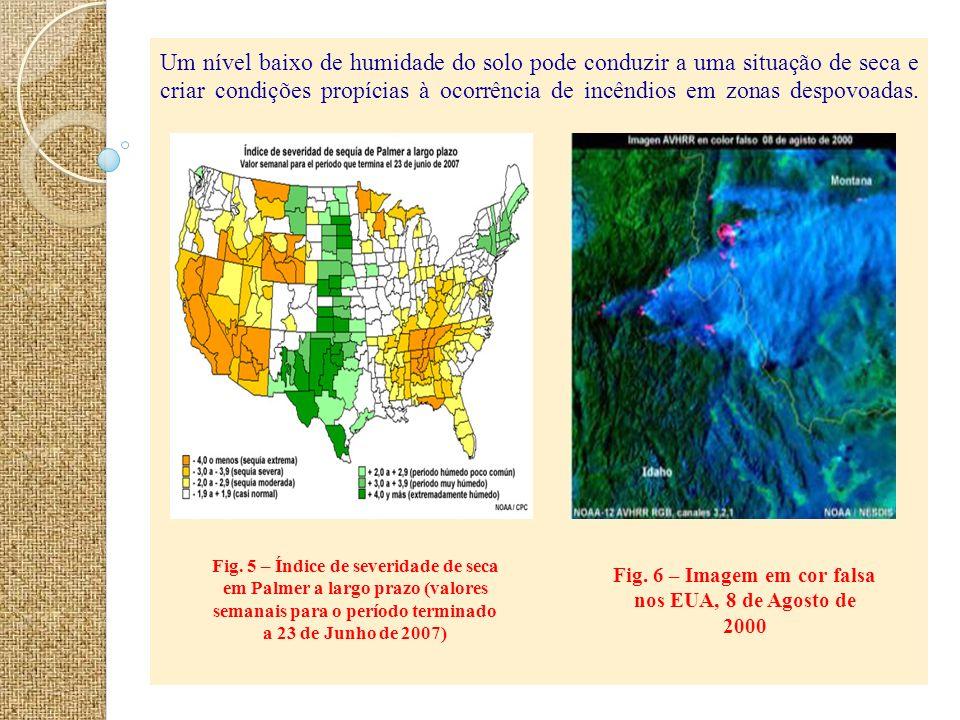 Um nível baixo de humidade do solo pode conduzir a uma situação de seca e criar condições propícias à ocorrência de incêndios em zonas despovoadas. Fi