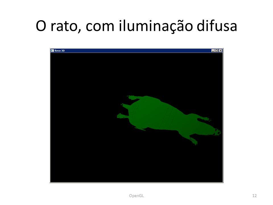 O rato, com iluminação difusa OpenGL12