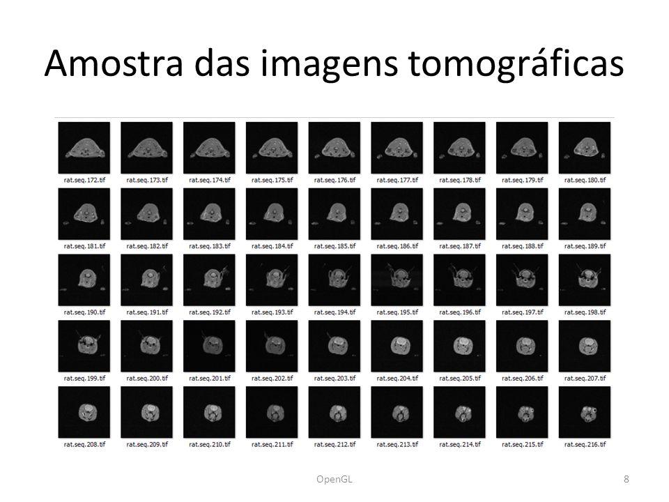 Amostra das imagens tomográficas 8OpenGL