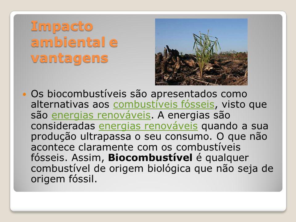 Impacto ambiental e vantagens Os biocombustíveis são apresentados como alternativas aos combustíveis fósseis, visto que são energias renováveis. A ene