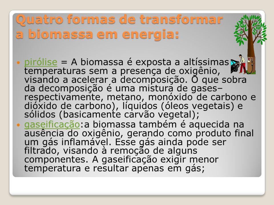 Quatro formas de transformar a biomassa em energia: pirólise = A biomassa é exposta a altíssimas temperaturas sem a presença de oxigênio, visando a ac