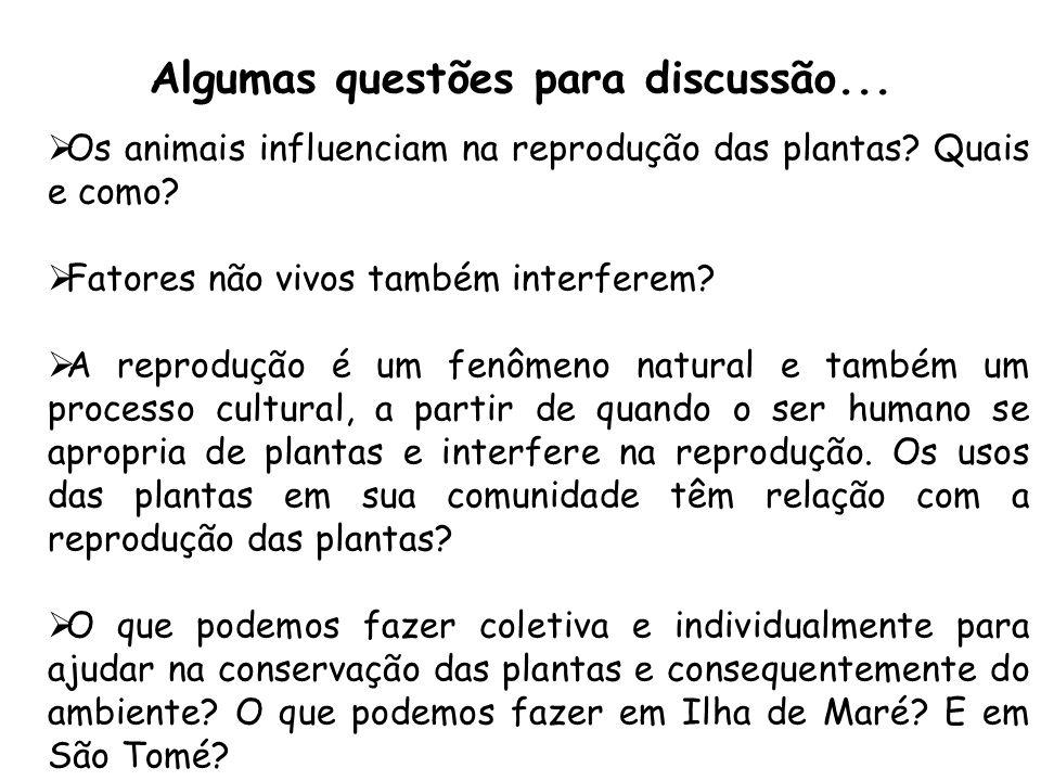 Algumas questões para discussão... Os animais influenciam na reprodução das plantas? Quais e como? Fatores não vivos também interferem? A reprodução é
