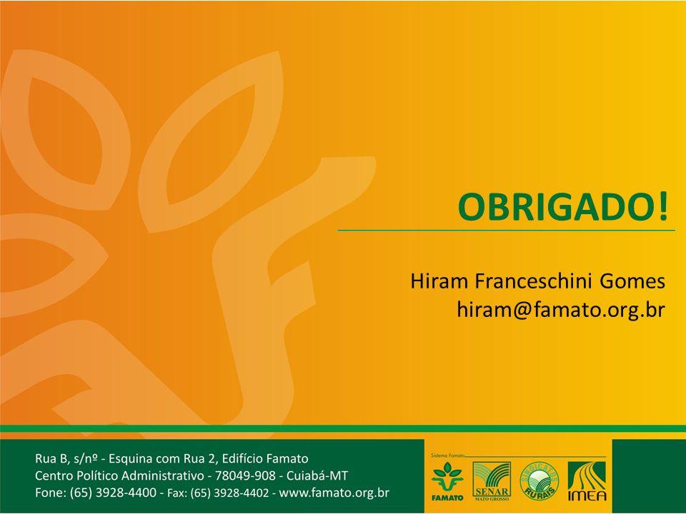 OBRIGADO! Hiram Franceschini Gomes hiram@famato.org.br