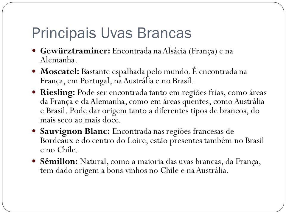 Principais Uvas Brancas Gewürztraminer: Encontrada na Alsácia (França) e na Alemanha. Moscatel: Bastante espalhada pelo mundo. É encontrada na França,