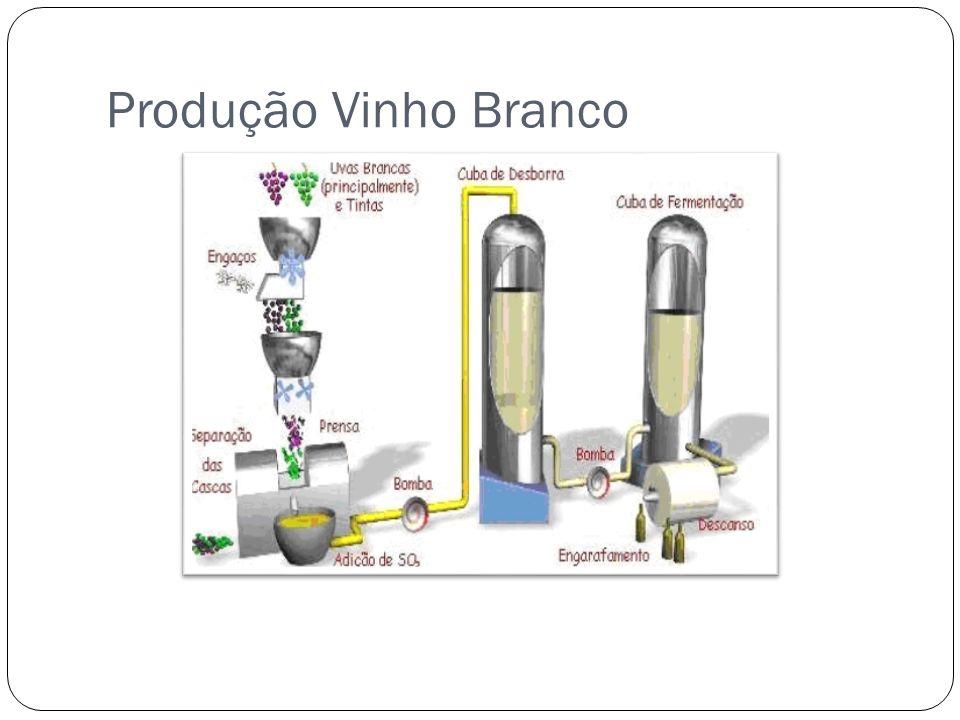 Produção Vinho Branco