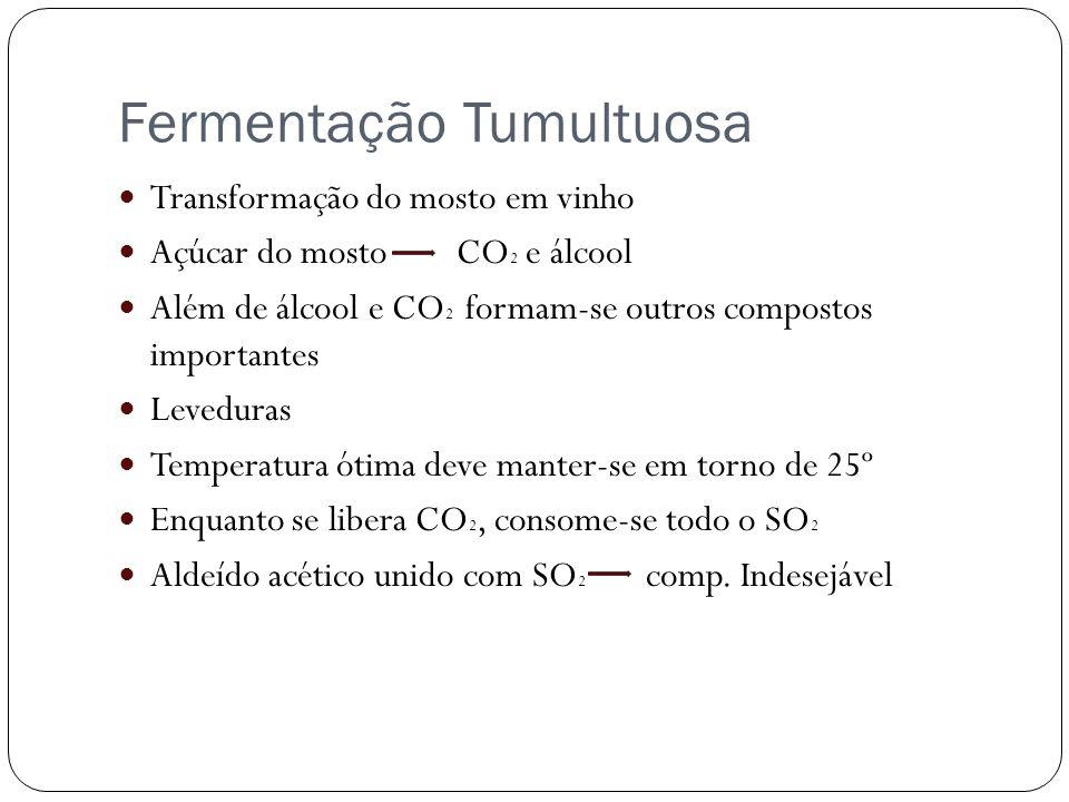 Fermentação Tumultuosa Transformação do mosto em vinho Açúcar do mosto CO 2 e álcool Além de álcool e CO 2 formam-se outros compostos importantes Leve