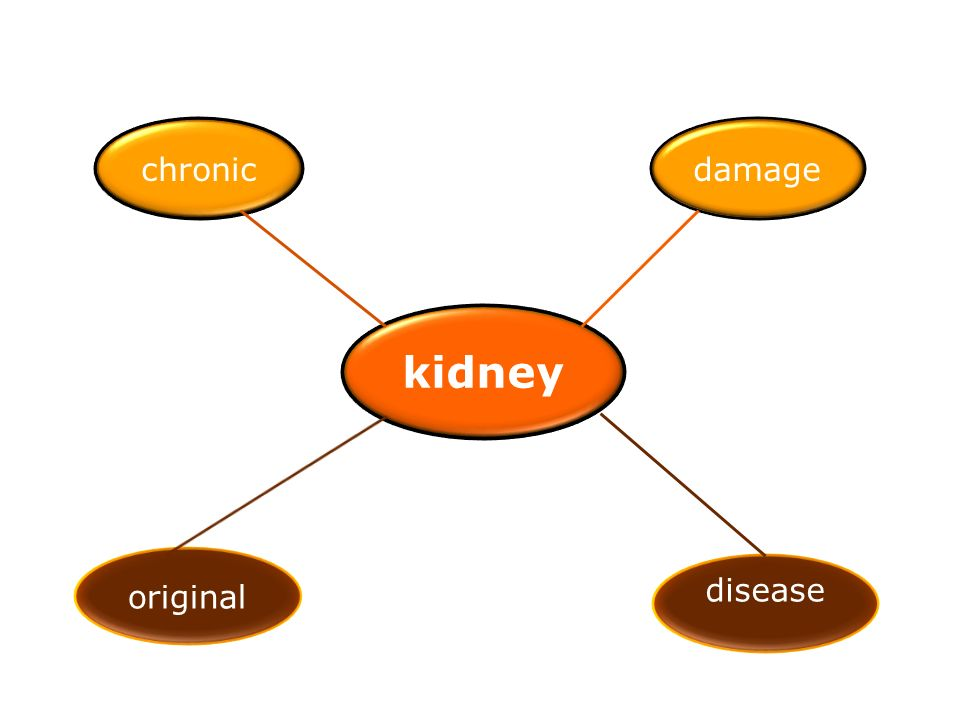 kidney chronicdamage disease original