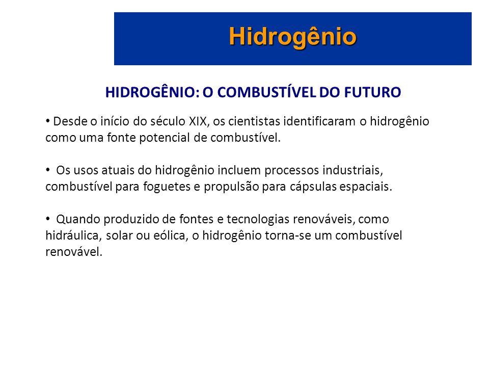 HIDROGÊNIO: O COMBUSTÍVEL DO FUTURO Hidrogênio Desde o início do século XIX, os cientistas identificaram o hidrogênio como uma fonte potencial de combustível.