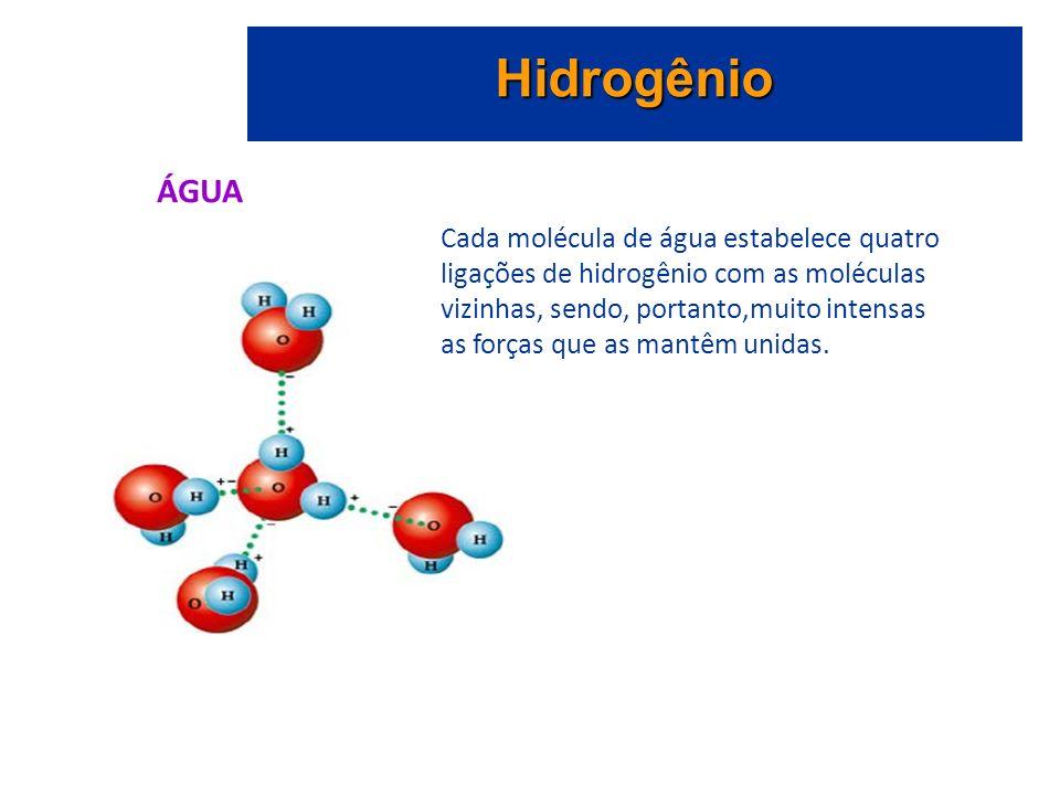 Hidrogênio ÁGUA Cada molécula de água estabelece quatro ligações de hidrogênio com as moléculas vizinhas, sendo, portanto,muito intensas as forças que as mantêm unidas.