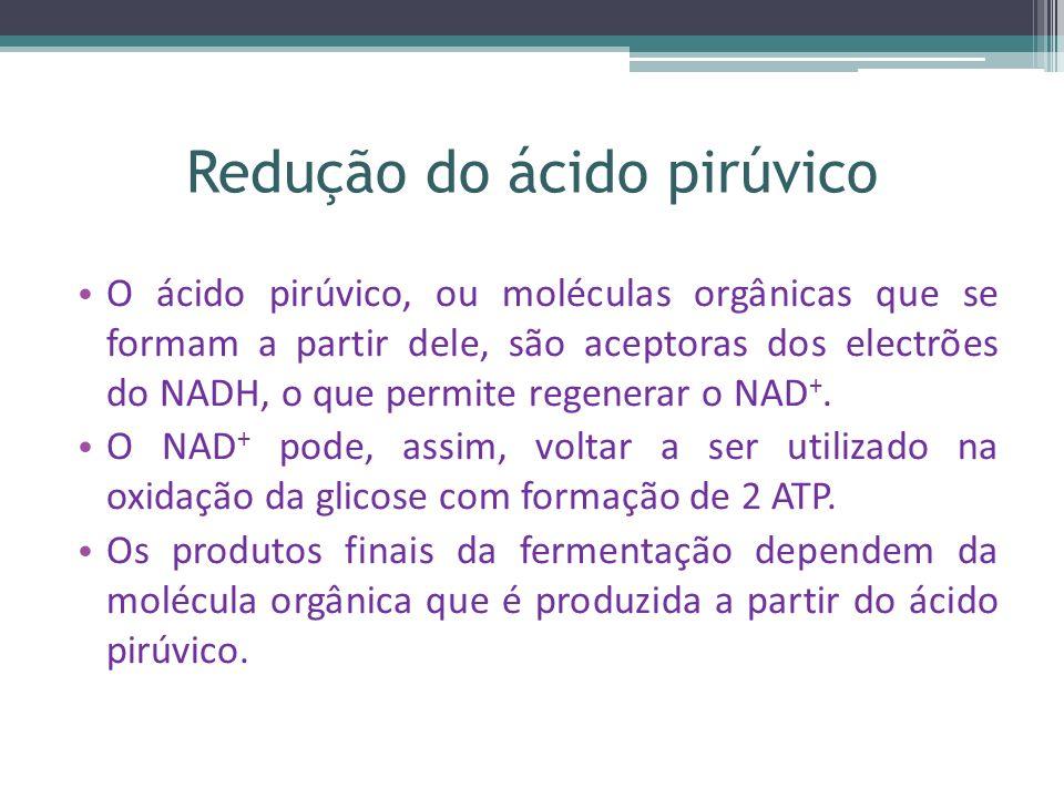 Redução do ácido pirúvico O ácido pirúvico, ou moléculas orgânicas que se formam a partir dele, são aceptoras dos electrões do NADH, o que permite regenerar o NAD +.
