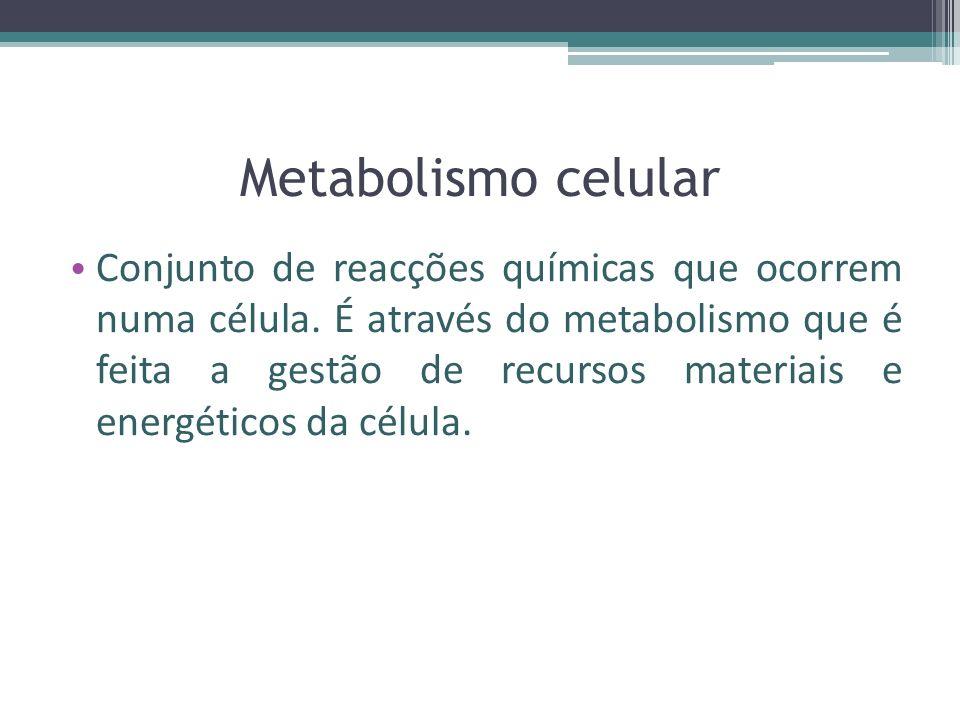 Metabolismo celular Conjunto de reacções químicas que ocorrem numa célula.