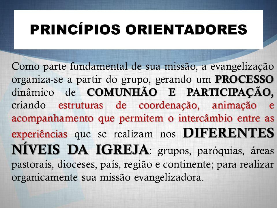 PRINCÍPIOS ORIENTADORES PROCESSO COMUNHÃO E PARTICIPAÇÃO, estruturas de coordenação, animação e acompanhamento que permitem o intercâmbio entre as experiências DIFERENTES NÍVEIS DA IGREJA Como parte fundamental de sua missão, a evangelização organiza-se a partir do grupo, gerando um PROCESSO dinâmico de COMUNHÃO E PARTICIPAÇÃO, criando estruturas de coordenação, animação e acompanhamento que permitem o intercâmbio entre as experiências que se realizam nos DIFERENTES NÍVEIS DA IGREJA : grupos, paróquias, áreas pastorais, dioceses, país, região e continente; para realizar organicamente sua missão evangelizadora.
