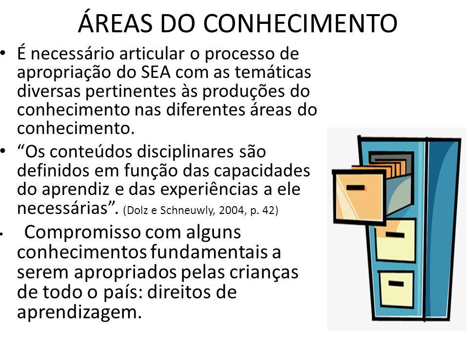 ÁREAS DO CONHECIMENTO É necessário articular o processo de apropriação do SEA com as temáticas diversas pertinentes às produções do conhecimento nas d