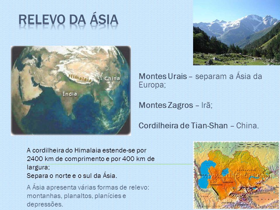 Montes Urais – separam a Ásia da Europa; Montes Zagros – Irã; Cordilheira de Tian-Shan – China. A Ásia apresenta várias formas de relevo: montanhas, p