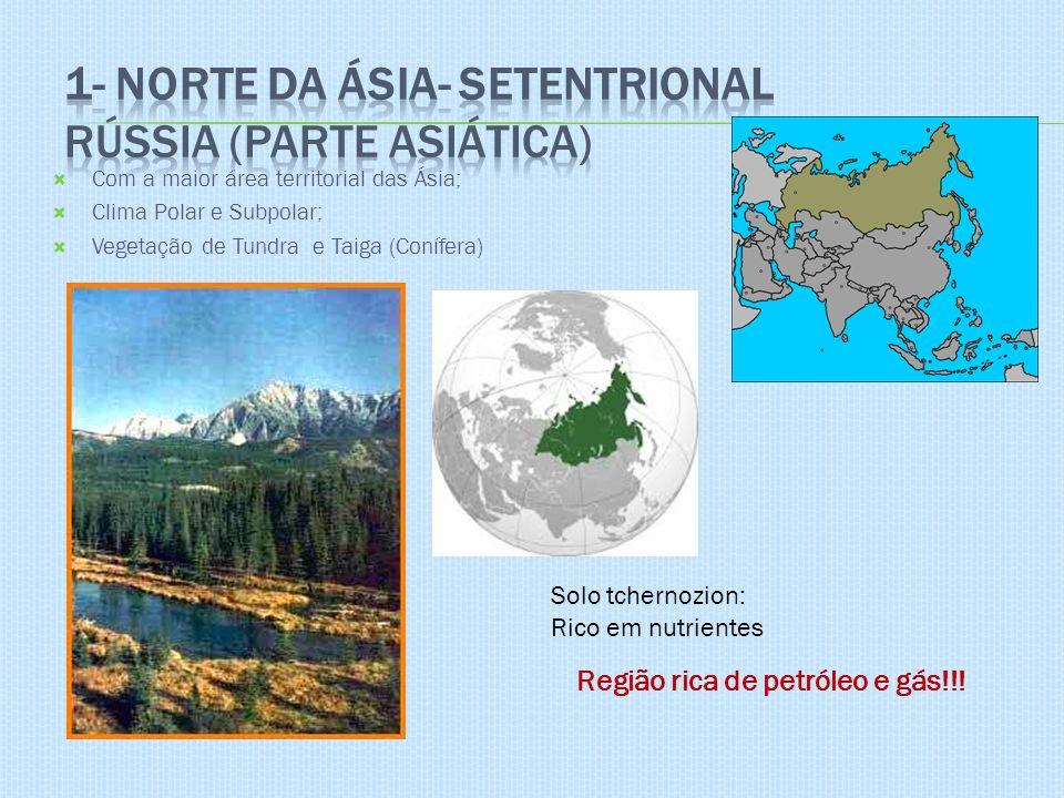 Com a maior área territorial das Ásia; Clima Polar e Subpolar; Vegetação de Tundra e Taiga (Conífera) Solo tchernozion: Rico em nutrientes Região rica