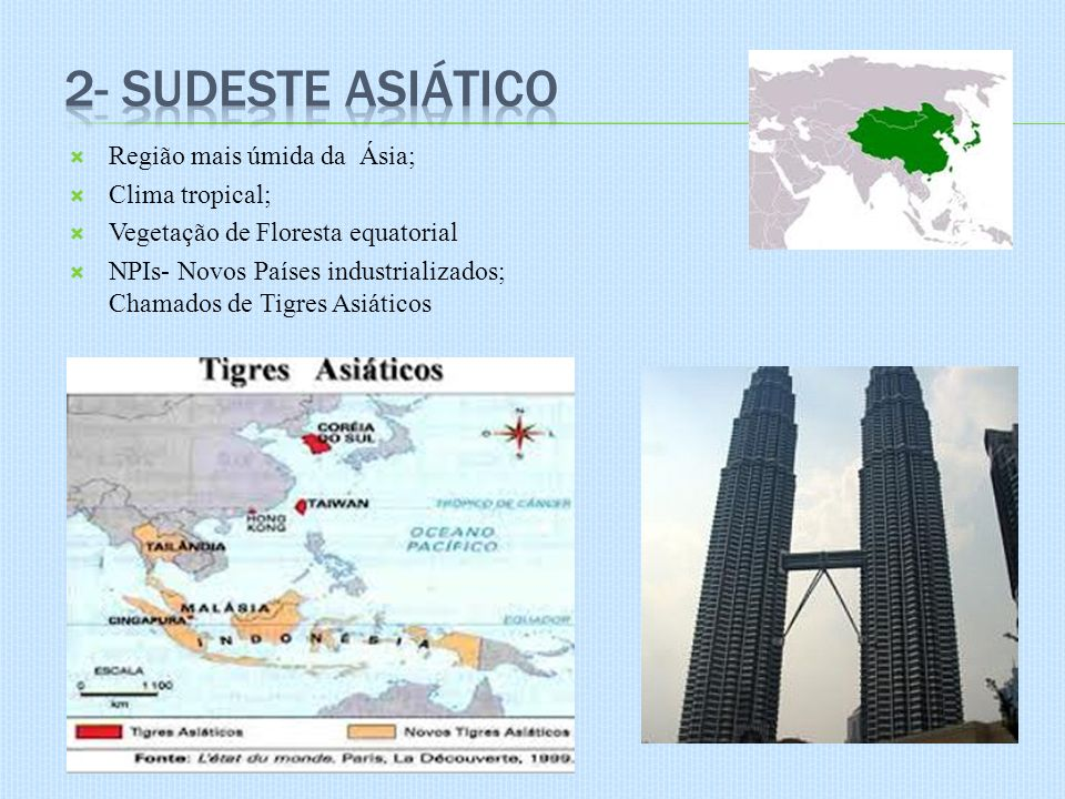 Região mais úmida da Ásia; Clima tropical; Vegetação de Floresta equatorial NPIs- Novos Países industrializados; Chamados de Tigres Asiáticos