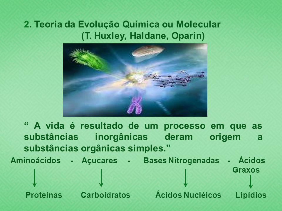 2. Teoria da Evolução Química ou Molecular (T. Huxley, Haldane, Oparin) A vida é resultado de um processo em que as substâncias inorgânicas deram orig