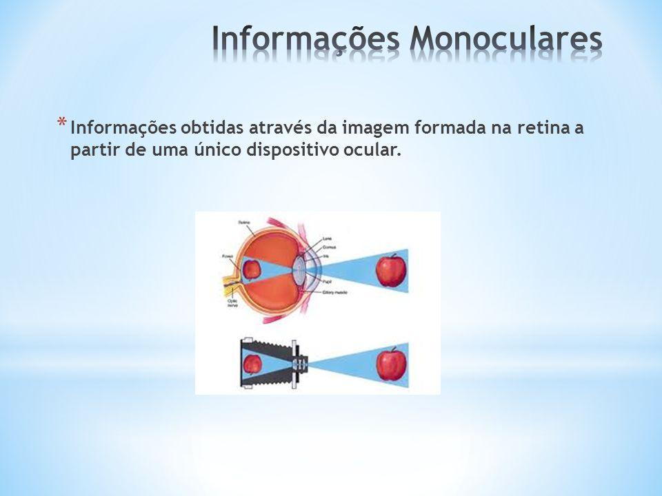 * Informações obtidas através da imagem formada na retina a partir de uma único dispositivo ocular.