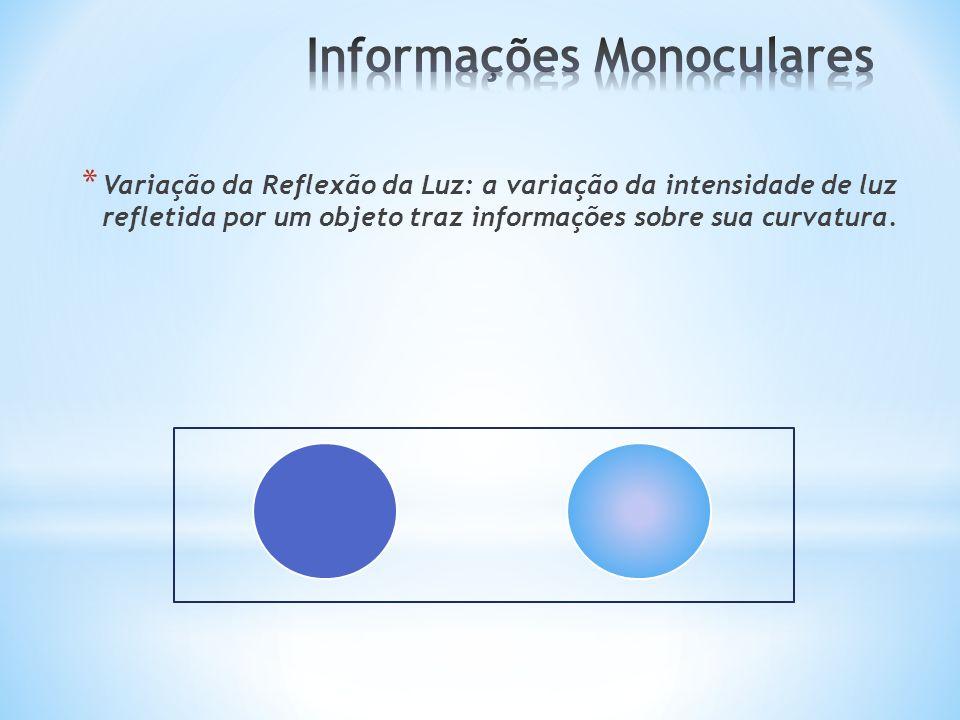 * Variação da Reflexão da Luz: a variação da intensidade de luz refletida por um objeto traz informações sobre sua curvatura.