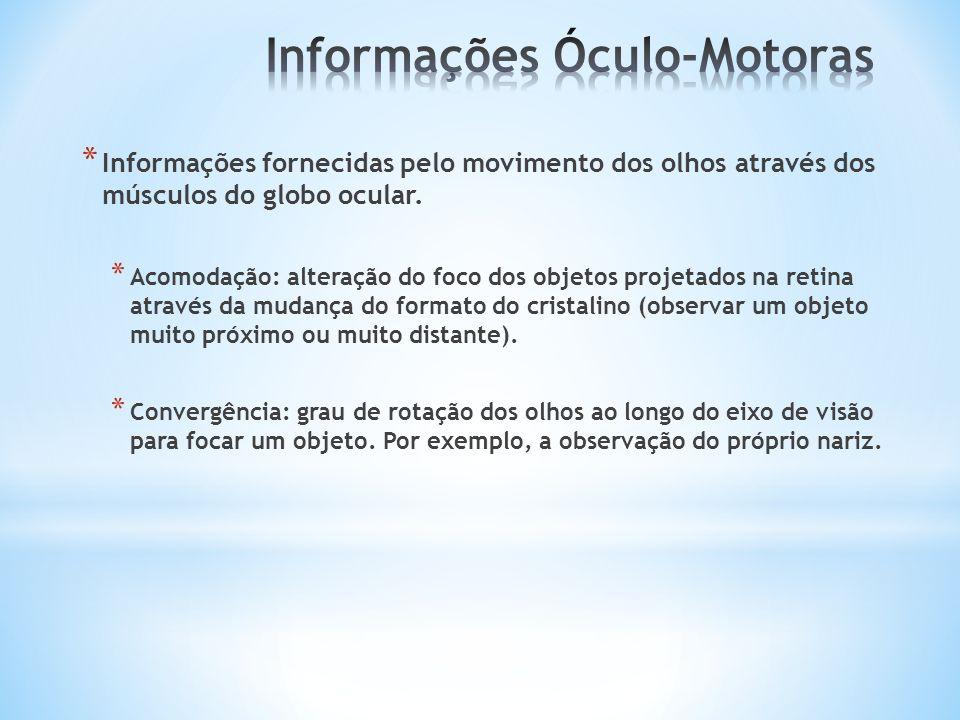* Informações fornecidas pelo movimento dos olhos através dos músculos do globo ocular. * Acomodação: alteração do foco dos objetos projetados na reti
