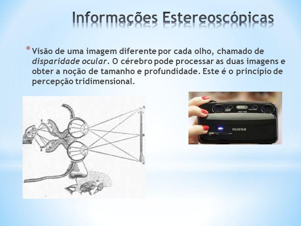 * Visão de uma imagem diferente por cada olho, chamado de disparidade ocular. O cérebro pode processar as duas imagens e obter a noção de tamanho e pr