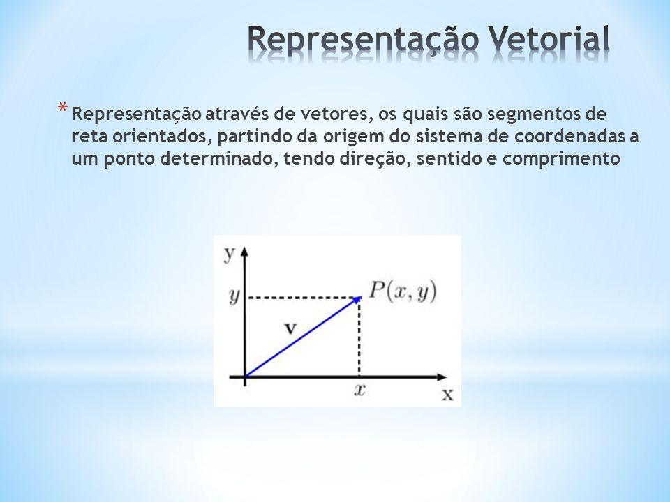 * Representação através de vetores, os quais são segmentos de reta orientados, partindo da origem do sistema de coordenadas a um ponto determinado, te