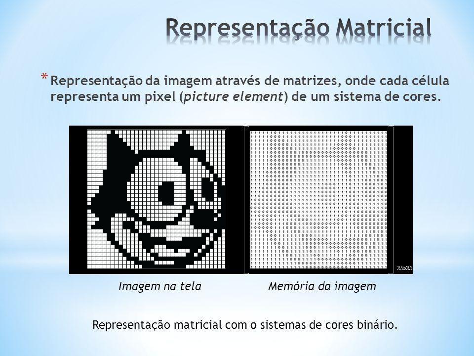 * Representação da imagem através de matrizes, onde cada célula representa um pixel (picture element) de um sistema de cores. Representação matricial