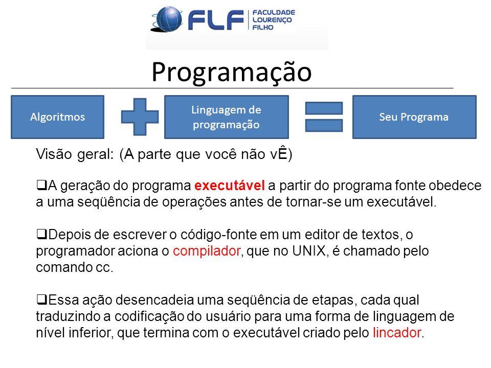 Programação Algoritmos Linguagem de programação Seu Programa Visão geral: (A parte que você não vÊ) A geração do programa executável a partir do progr