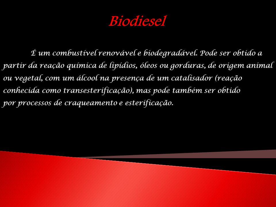 Biodiesel É um combustível renovável e biodegradável. Pode ser obtido a partir da reação química de lipídios, óleos ou gorduras, de origem animal ou v