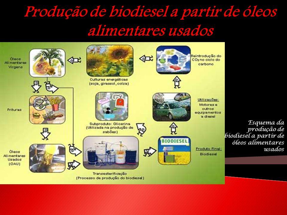 Produção de biodiesel a partir de óleos alimentares usados Esquema da produção de biodiesel a partir de óleos alimentares usados