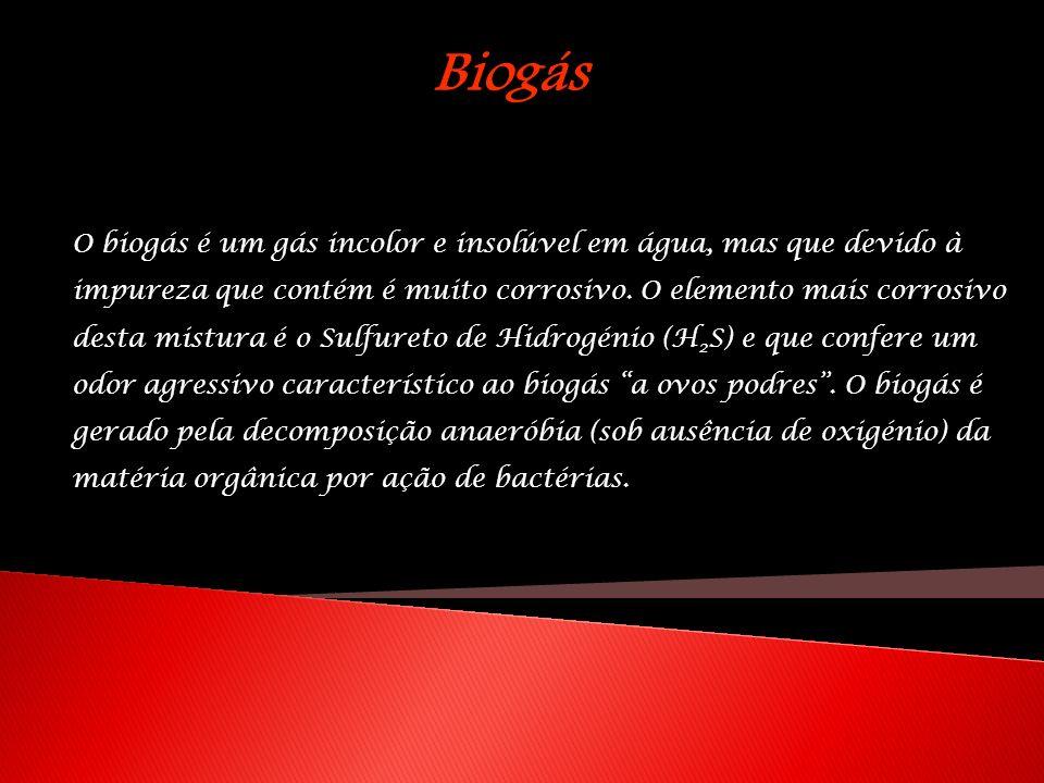 O biogás é um gás incolor e insolúvel em água, mas que devido à impureza que contém é muito corrosivo. O elemento mais corrosivo desta mistura é o Sul