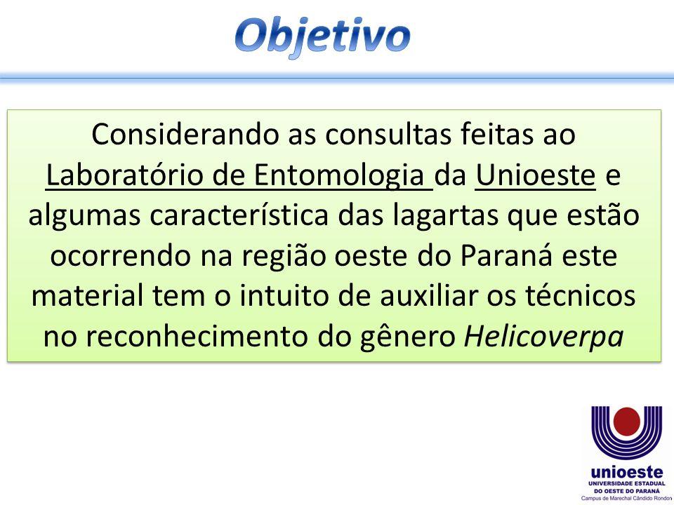Considerando as consultas feitas ao Laboratório de Entomologia da Unioeste e algumas característica das lagartas que estão ocorrendo na região oeste do Paraná este material tem o intuito de auxiliar os técnicos no reconhecimento do gênero Helicoverpa