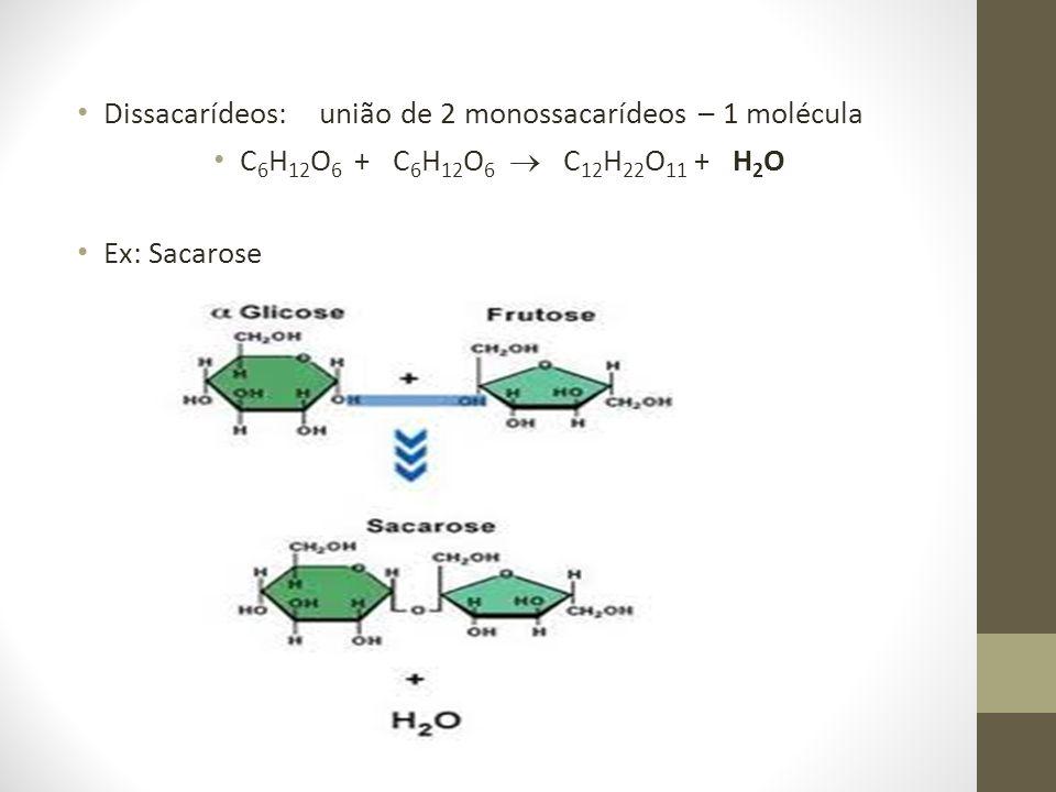 Dissacarídeos: união de 2 monossacarídeos – 1 molécula C 6 H 12 O 6 + C 6 H 12 O 6 C 12 H 22 O 11 + H 2 O Ex: Sacarose