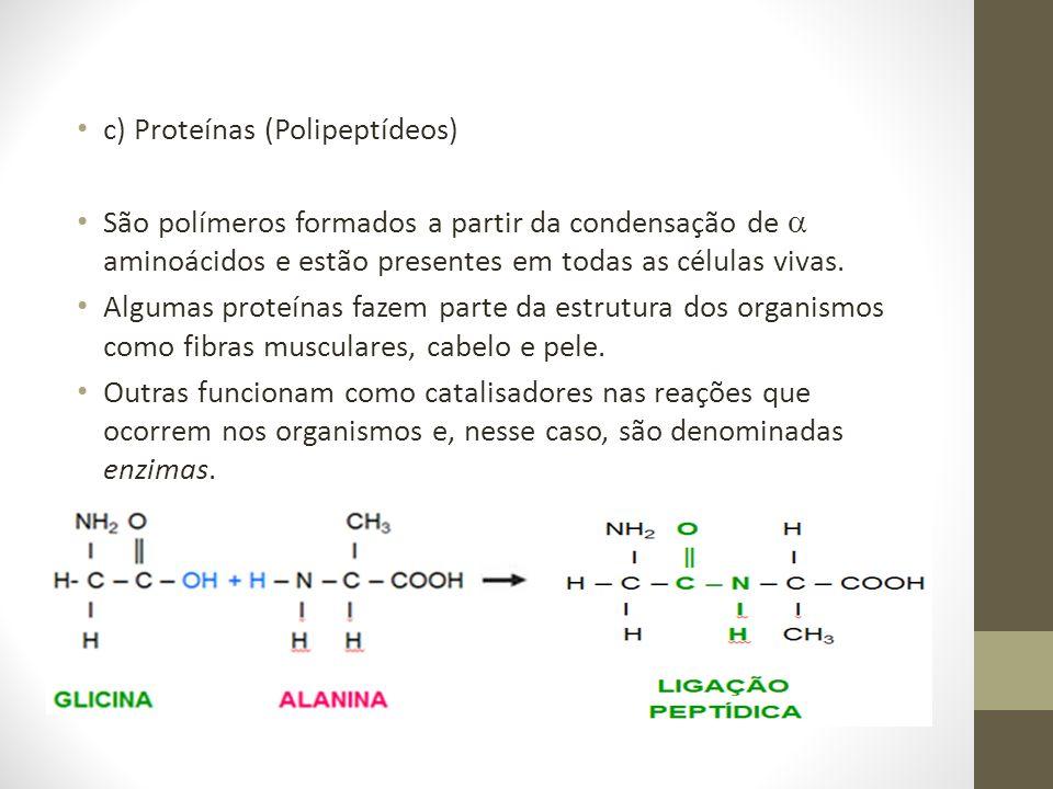 c) Proteínas (Polipeptídeos) São polímeros formados a partir da condensação de aminoácidos e estão presentes em todas as células vivas. Algumas proteí