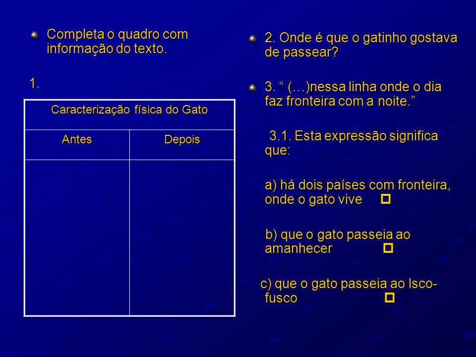Completa o quadro com informação do texto. 1. 2. Onde é que o gatinho gostava de passear? 3. (…)nessa linha onde o dia faz fronteira com a noite. 3.1.