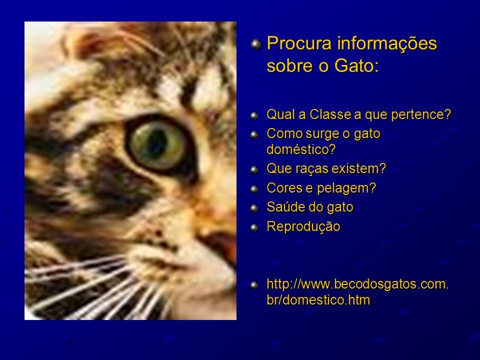 Procura informações sobre o Gato: Qual a Classe a que pertence? Como surge o gato doméstico? Que raças existem? Cores e pelagem? Saúde do gato Reprodu