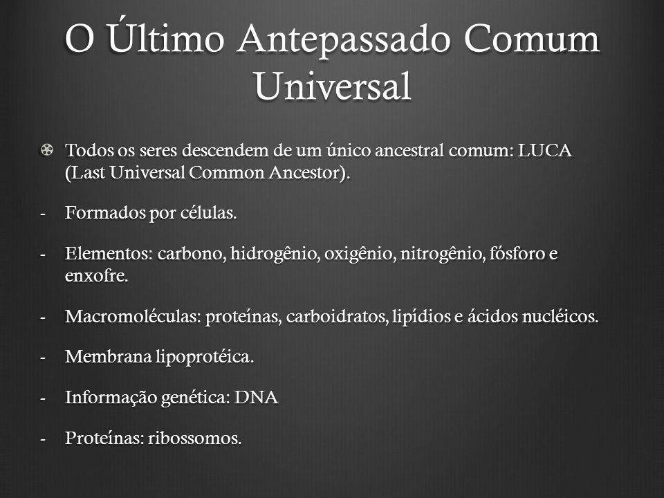 O Último Antepassado Comum Universal Todos os seres descendem de um único ancestral comum: LUCA (Last Universal Common Ancestor).