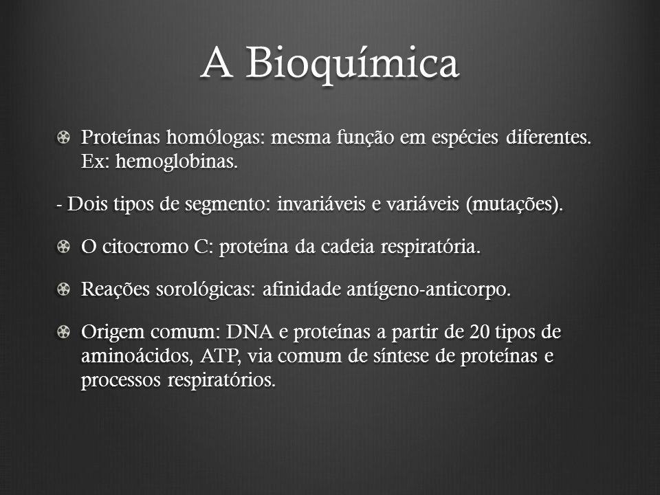 A Bioquímica Proteínas homólogas: mesma função em espécies diferentes.