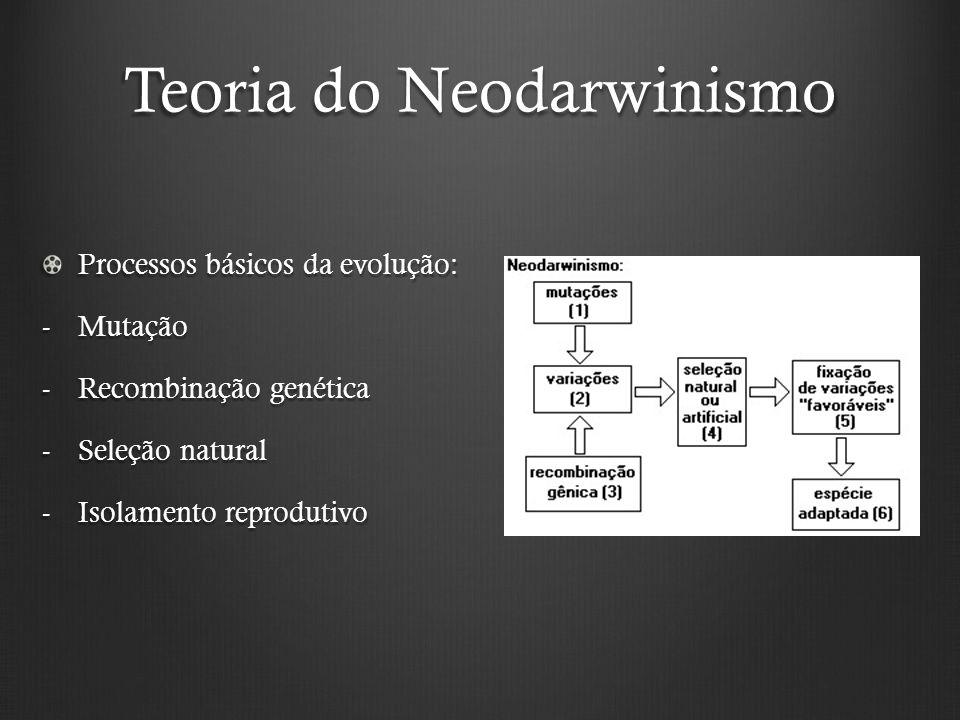 Teoria do Neodarwinismo Processos básicos da evolução: -Mutação -Recombinação genética -Seleção natural -Isolamento reprodutivo