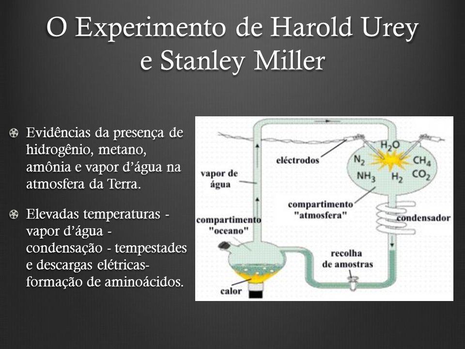 O Experimento de Harold Urey e Stanley Miller Evidências da presença de hidrogênio, metano, amônia e vapor dágua na atmosfera da Terra.