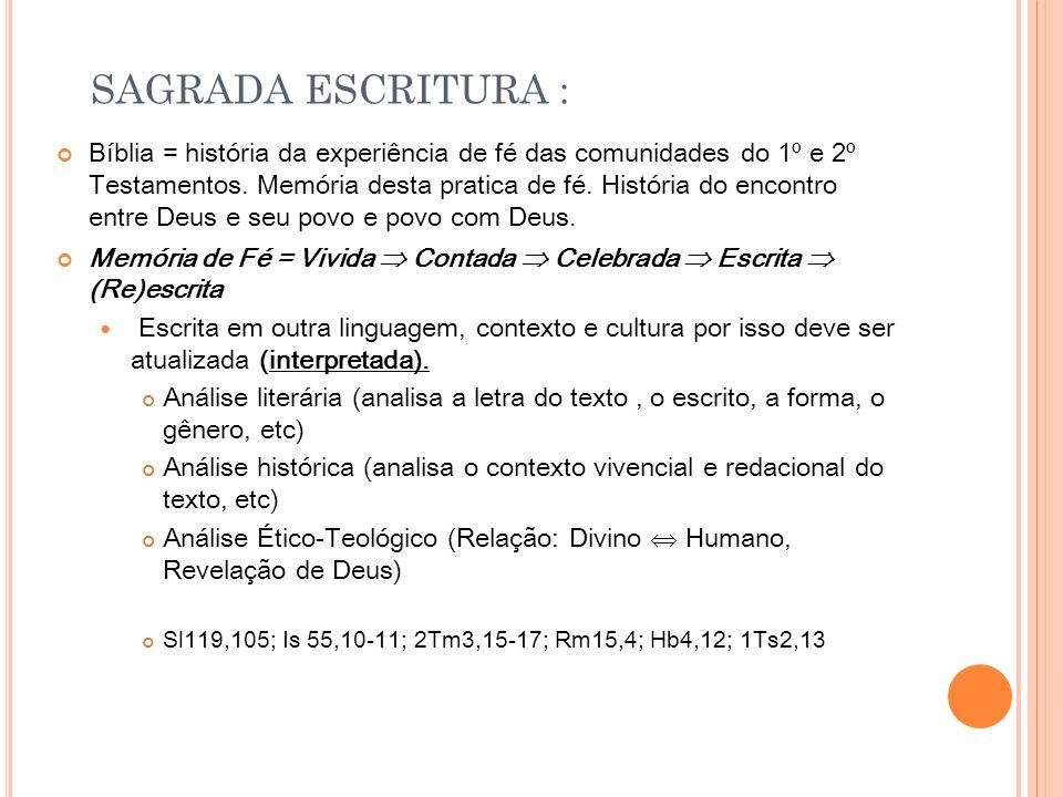 C ARTAS PASTORAIS : 1T M, 2T M, T T Carta Deutero- Paulina FÉ (Cruz e Ressurreição) X Fé (Fidelidade sã doutrina) Maior depósito de FÉ 1Tm 6,20-21 Conteúdo de Fé e da Tradição 1 Tm 1,10 // 4,6 // 6,3 2 Tm 1,12.14 // 2,15 // 4,3 Tt 1, 9.