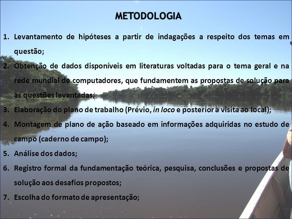 METODOLOGIA 1.Levantamento de hipóteses a partir de indagações a respeito dos temas em questão; 2.Obtenção de dados disponíveis em literaturas voltada