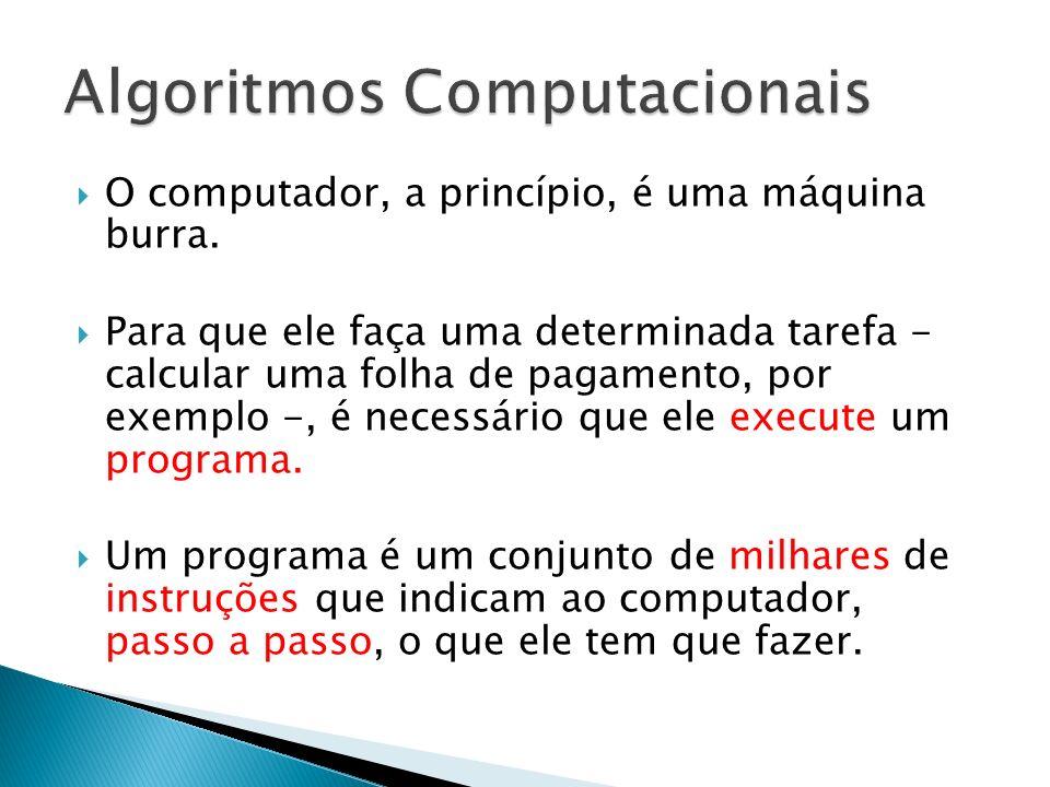 O computador, a princípio, é uma máquina burra. Para que ele faça uma determinada tarefa - calcular uma folha de pagamento, por exemplo -, é necessári